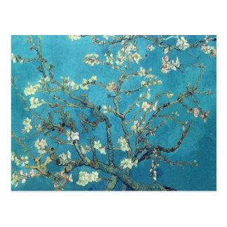 Ramas con el flor de la almendra - Van Gogh Postal