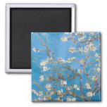 Ramas con el flor Van Gogh de la almendra Imán Cuadrado