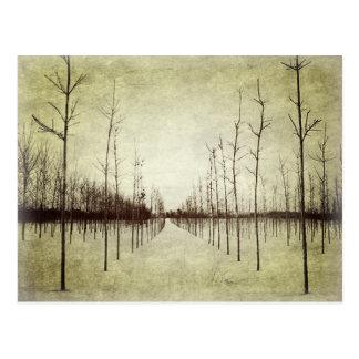 ramas de árbol abstractas modernas del paisaje del tarjeta postal