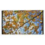 Ramas de árbol del otoño