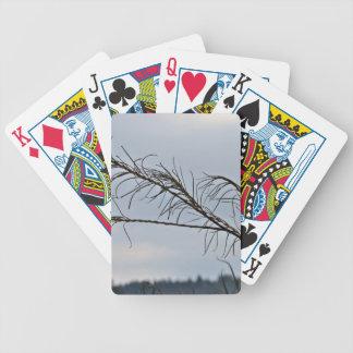Ramas de árbol desnudas contra un cielo nublado cartas de juego