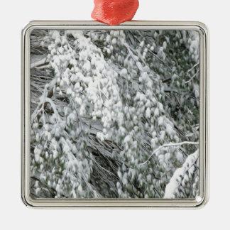 Ramas de árbol después de nevadas pesadas ornamente de reyes