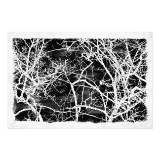 Ramas de árbol en fondo negro cojinete