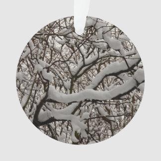 Ramas de árbol nevadas