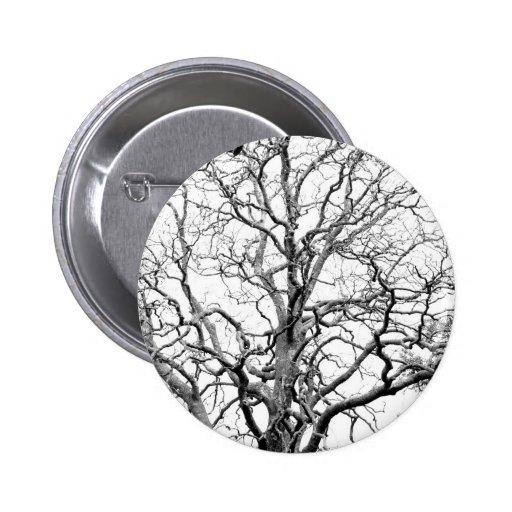 Ramas de árbol pin