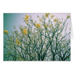 Ramas de árbol y flores amarillos felicitaciones