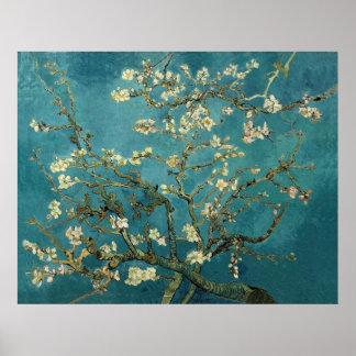 Ramas de la almendra de Van Gogh en la floración Póster