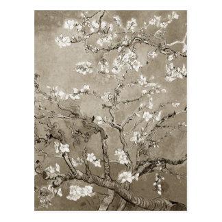 Ramas de la almendra de Van Gogh en la floración - Postal