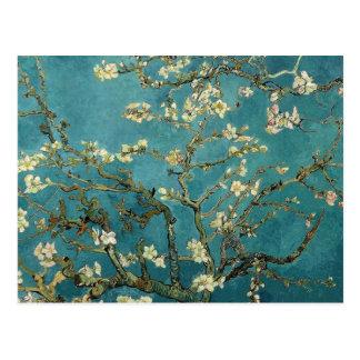 Ramas de la almendra de Van Gogh en la floración Tarjetas Postales