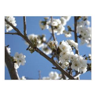 Ramas de la flor de cerezo contra el cielo azul invitaciones personales