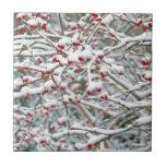 Ramas de la nieve del navidad azulejo cerámica