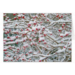 Ramas de la nieve del navidad tarjeta de felicitación