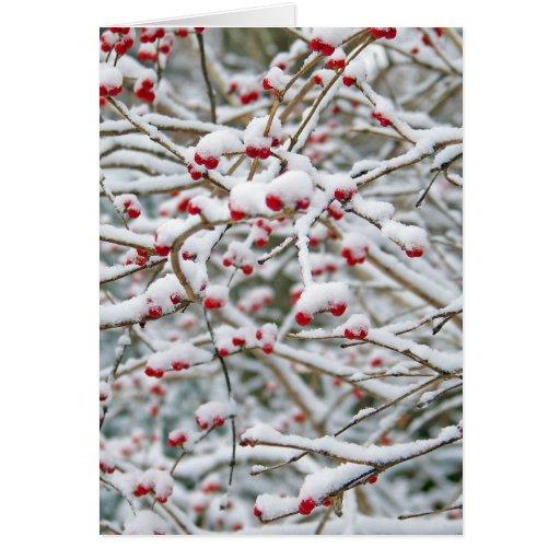 Ramas de la nieve del navidad tarjetón