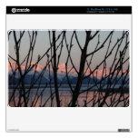 Ramas de la primavera en puesta del sol MacBook air skins