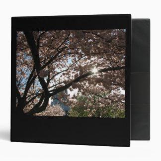"""Ramas de Sakura Carpeta 2"""""""