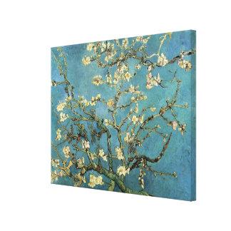 Ramas de Vincent van Gogh con el flor de la almend Lona Estirada Galerías