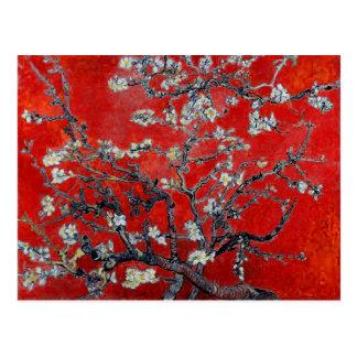 Ramas de Vincent van Gogh con el flor de la almend Tarjetas Postales