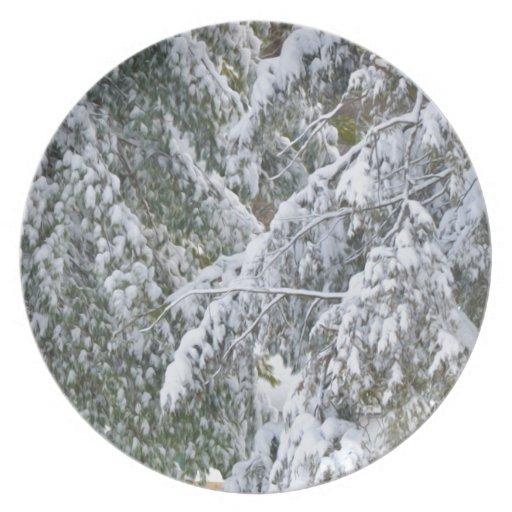 Ramas en la estación del invierno platos