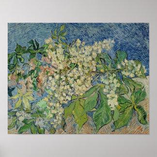 Ramas florecientes de la castaña de Vincent van Póster