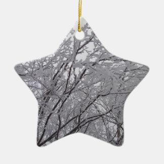 Ramas heladas nieve en Vermont Ornamentos De Navidad
