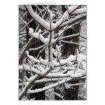 Ramas nevadas felicitacion
