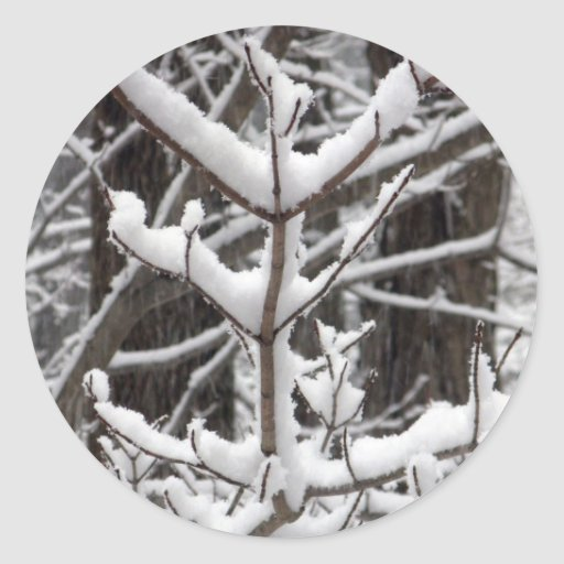 Ramas nevadas etiqueta redonda