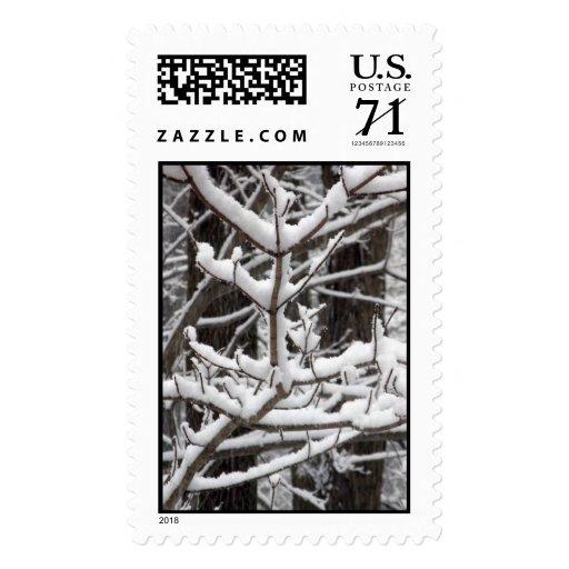 Ramas nevadas - sello grande
