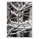 Ramas nevadas tarjeta de felicitación