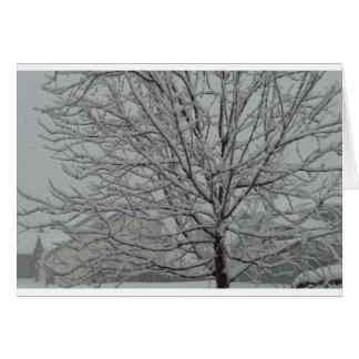Ramas Nevado Tarjeta De Felicitación