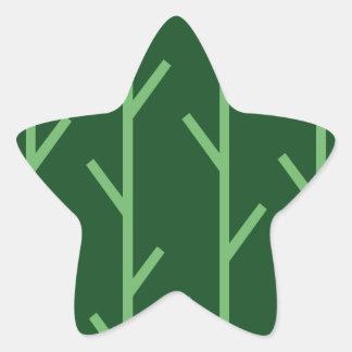 Ramas Pegatina En Forma De Estrella