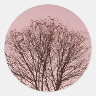 Ramas rosadas del cielo y de árbol etiqueta redonda