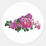 Rambler rosado subió etiqueta redonda