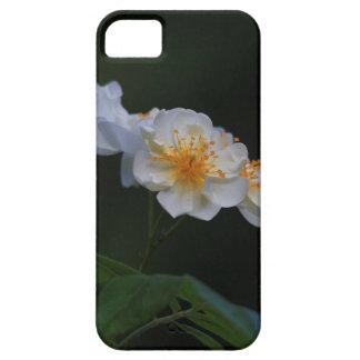 Ramblerrose iPhone 5 Cases