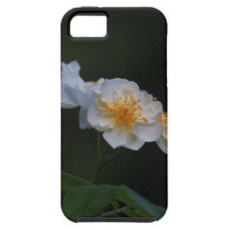 Ramblerrose iPhone SE/5/5s Case