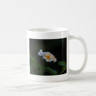 Ramblerrose Taza Básica Blanca
