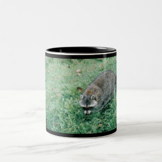 Ramblin' Raccoon Two-Tone Coffee Mug