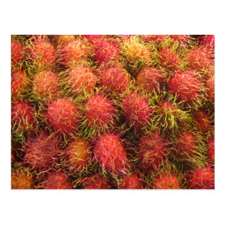 Rambutan Tropical Fruit Postcard