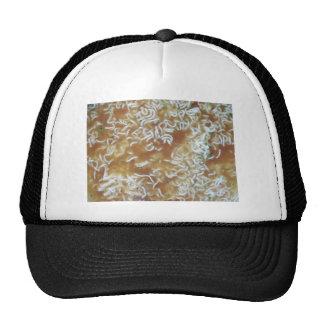 Ramen Soup Trucker Hat