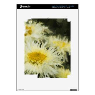Ramilletes pintados iPad 3 skin