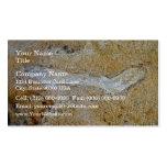 Ramita fósil en piedra caliza tarjetas personales