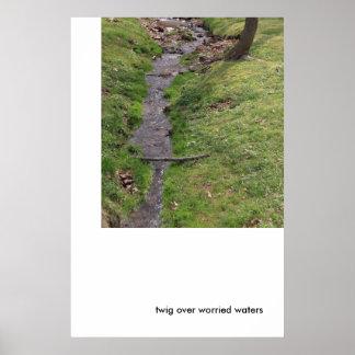 Ramita sobre las aguas preocupantes poster