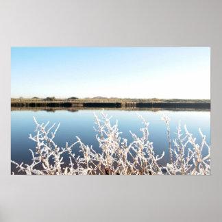 ramitas escarchadas en nieve contra el cielo azul  posters