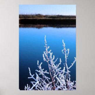ramitas heladas en nieve contra el cielo azul y el poster