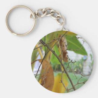 Ramitas y hojas llavero personalizado