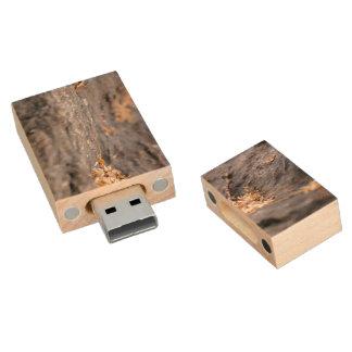 Ramitas y hojas secadas pen drive de madera USB 2.0