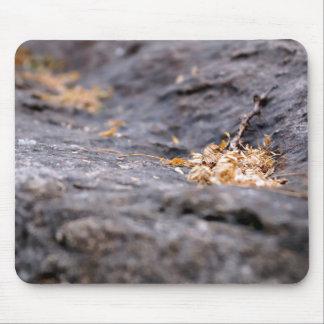 Ramitas y hojas secadas tapete de raton