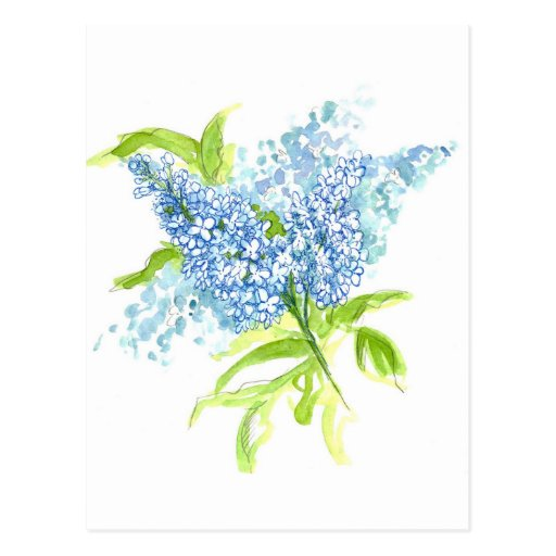 Ramo azul de la primavera de Liliac Postal
