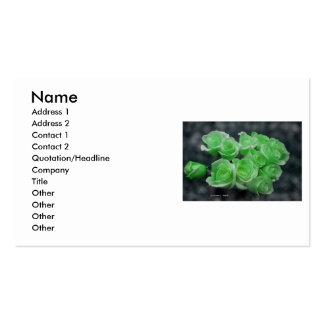 Ramo color de rosa teñido verde claro plantilla de tarjeta personal