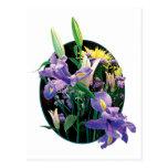 Ramo con los iris japoneses postal