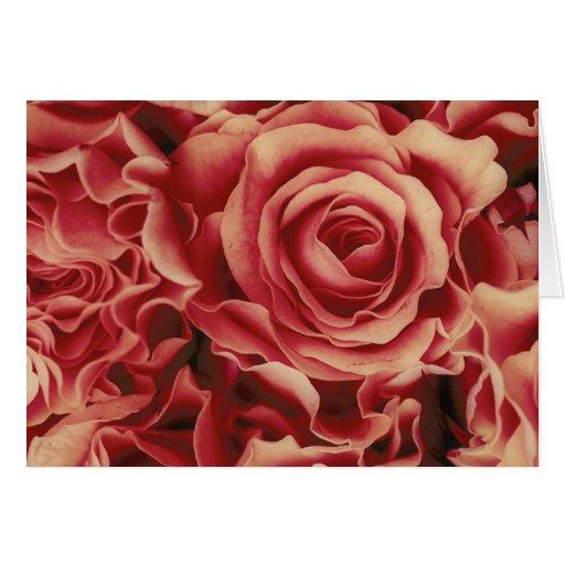 Ramo coralino de los rosas de rojos, floral, tarjetas